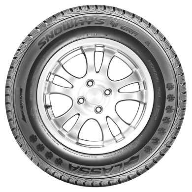 195/65R15 95T XL SNOWAYS ERA